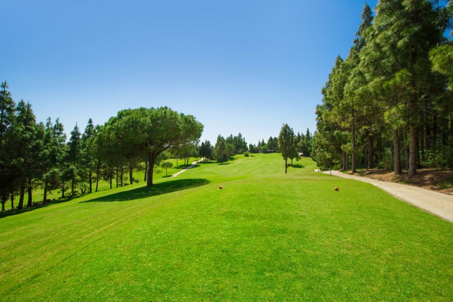 El Chaparral Golf Club 3896