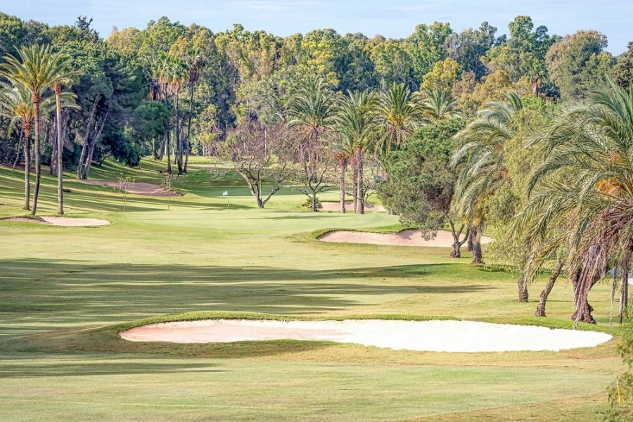El Paraiso Golf Club 3903