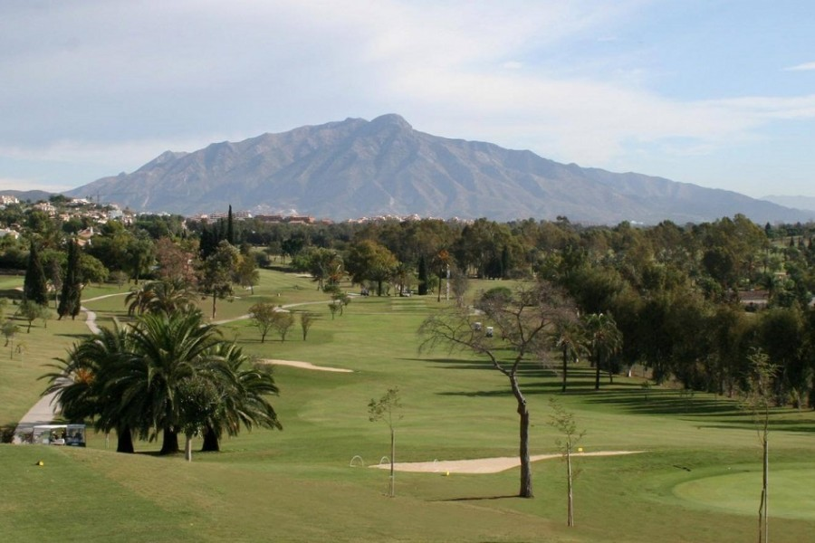 El Paraiso Golf Club 3905