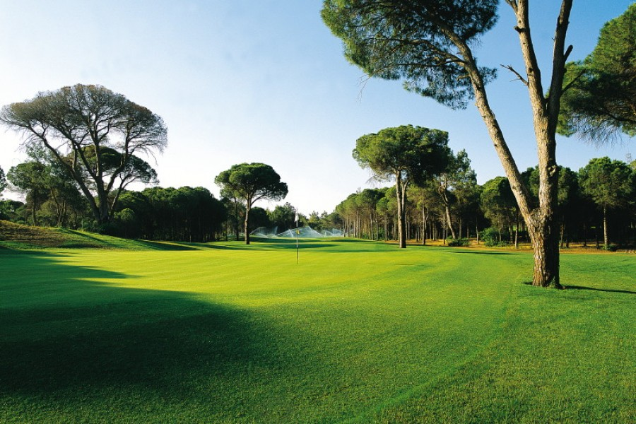 Cornelia Golf Club (Nick Faldo Course) 157