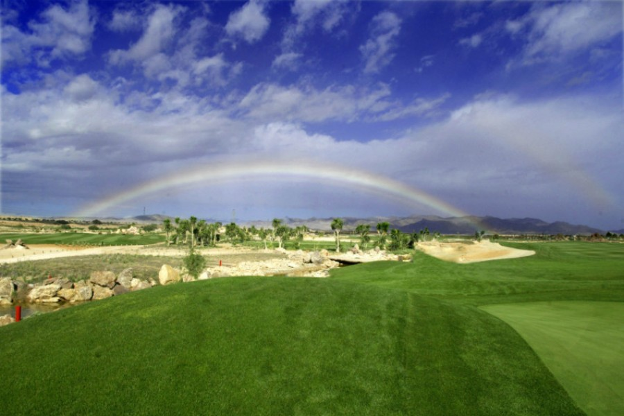 Desert Springs Golf Club 648