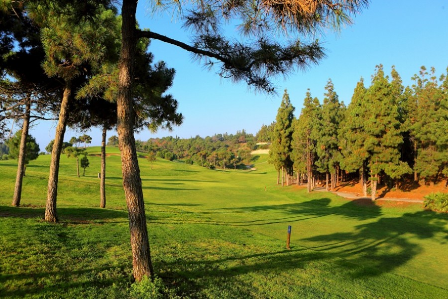 El Chaparral Golf Club 3893