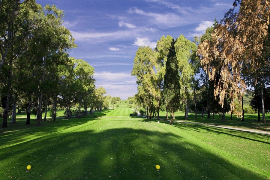 Atalaya Golf & Country Club 3879